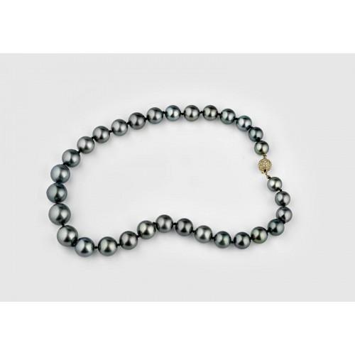 31 Tahitian Pearls...